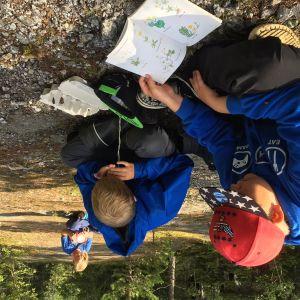 Kaksi poikaa luontoleirillä tutkii luontoa.