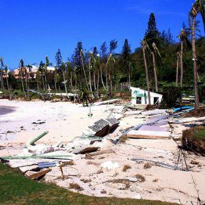 Myrskyn tuomaa romua rannalla. Palmurivistöltä tuuli on katkonut latvat.
