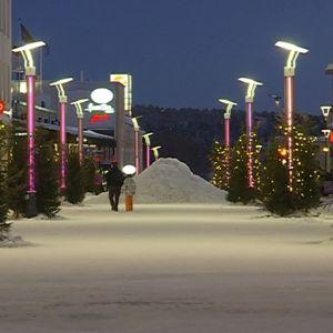 Rovaniemen kävelykadun jouluilme tuuheutui Janne Honkasen kuusilla, yllältyksenä ja pyytämättä.