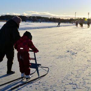 Potkukelkkailua Kallaveden jäällä