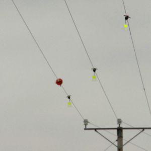Sähköjohtoihin asennettavat lintusuojat pyörivät tuulessa.