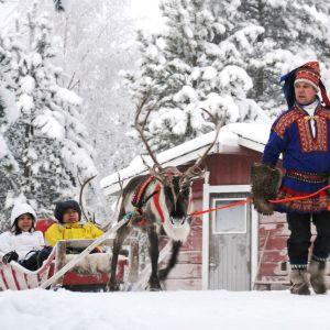 Kiinalaisturisteja poroajelulla Rovaniemellä.