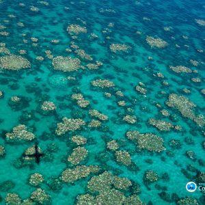Isoa Valliriuttaa Cairnsin lähellä Australiassa maaliskuussa 2017.
