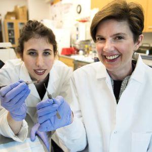 Kaksi labotatoriotakeissa olevaa naista pitää näytteitä pinsettien kärjessä.