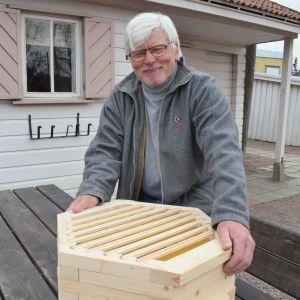 Kupittaan siirtolapuutarhassa on esillä harvinainen mutteripesä mehiläisille