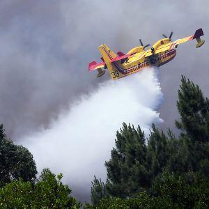 Lentokone sammutustöissä Alto da Louriceirassa, Portugalissa 20. kesäkuuta.