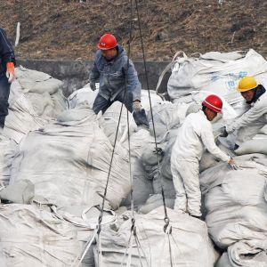 Pohjoiskorealaiset telakkatyöntekijät lastaavat säkkejä.