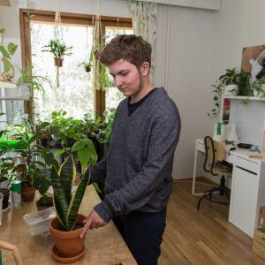 Noel Pettersson kotonaan Kannelmäessä