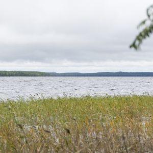 Järvi lainehtii syksyllä.