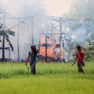 poltettuja taloja.