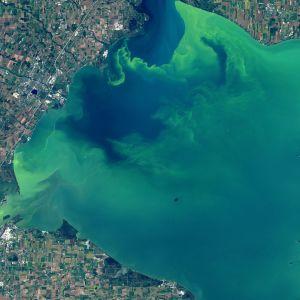 satelliitikuva lake erie järvestä Usa