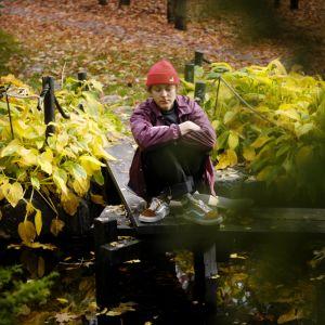 Roihuvuoren japanilaistyylinen puutarha Helsingissä.