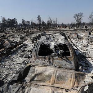 Metsäpalojen tuhoja Santa Rosassa Kaliforniassa.