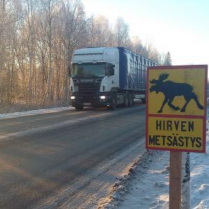 Hirven metsästyksestä varoittava merkki tien laidassa