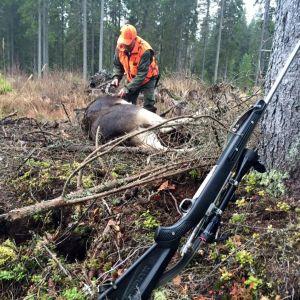 Hirvenkaato, ase, metsästäjä