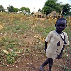 Etelä-Sudan, Alokwi