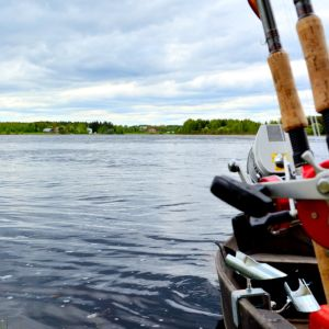 Vavat veneessä Tornionjoella