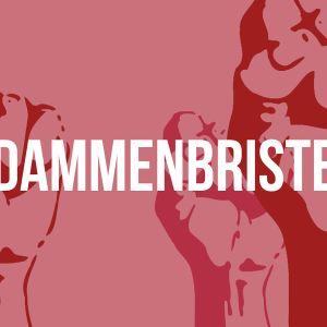 dammenbrister logo