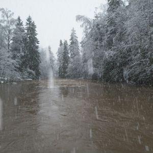 Lumisadetta Mynämäen Raukkaankoskella.