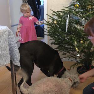 Milla Vuoristo-Kurronen haluaa viettää rauhallista joulua perheensä kanssa