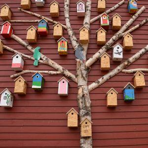En massa fågelholkar på en vägg på Strömsö.