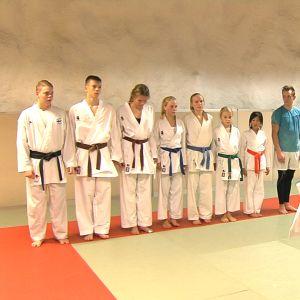 Landslagskaratekor och juniorer tränar tillsammans