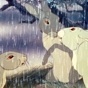 Bild av kaninerna i filmen Watership down som baserar sig på Richard Adams bok.