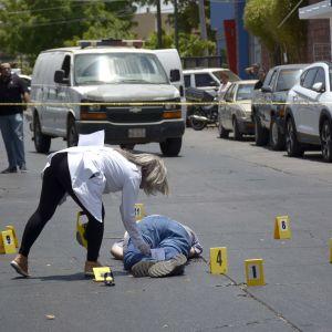 Javier Valdez kropp på en gata i Culiacan 15.5.2017