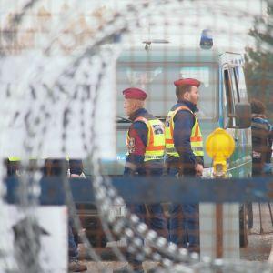 piikkilankaa ja rajavartioita Unkarin ja Kroatian rajalla