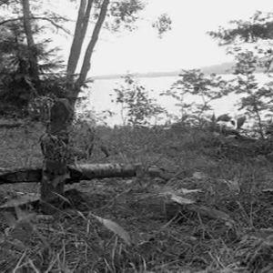 Bodomjärvi Espoo