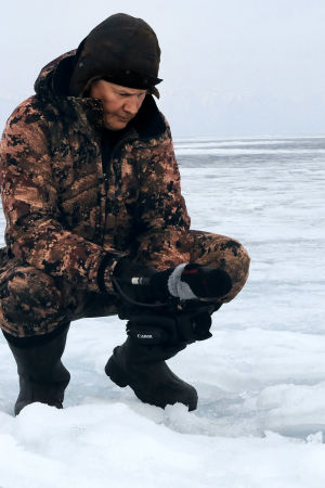 Juha Taskisen kuvaama dokumentti kertoo kuutin kasvamisesta hylkeeksi ja hylkeen elämään liittyvistä uhista.