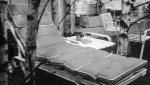 Solstolar och björkar på Habitare, 1970