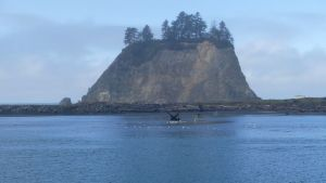 Quileute Nations hem i La Push