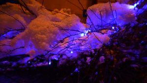 Julbelysning utomhus