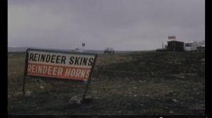 "Matkamuistojen myyntikoju jossain Lapissa, kyltti ""reindeer skins, reindeer horns""."