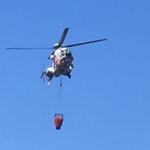 Gränsbevakningsväsendets helikoptre mot blå himmel.