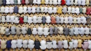 Muslimska män fotade uppifrån under fredagsbönen.