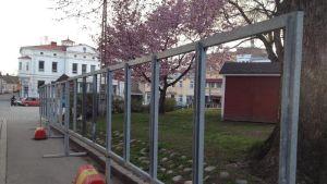 Tomma valaffischställningar på en trottoar, ett blommande träd, gamla bygnader.