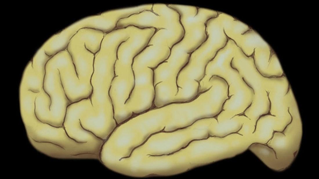 Neurotieteet