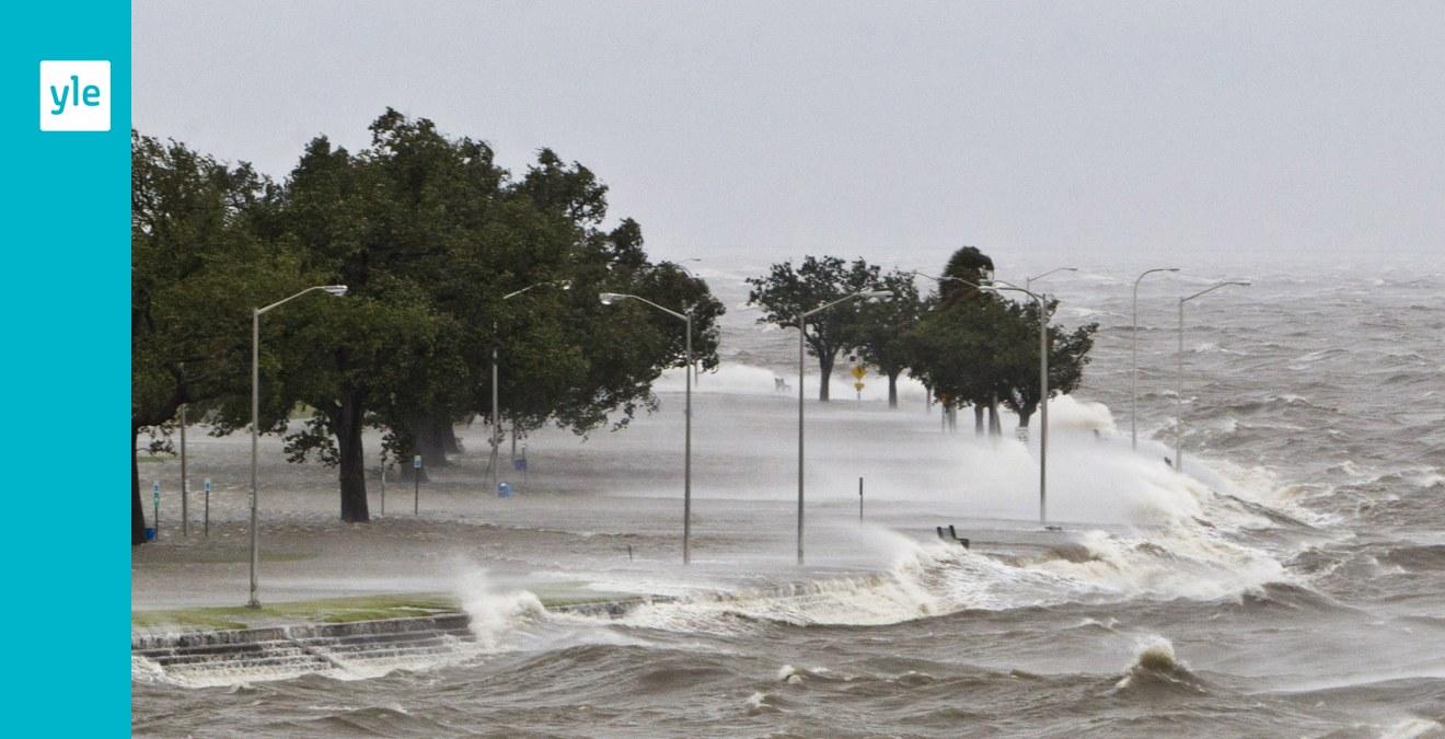 S f r orkaner tyfoner och cykloner sina namn utrikes for Bilder fa r treppenhaus