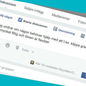 En skärmdump av en statusuppdatering på Facebook där en ungdom erbjuder sig att t.ex. klippa gräsmattan åt folk.