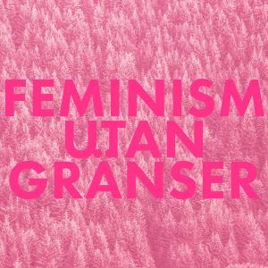 Feministinen puolue-bild