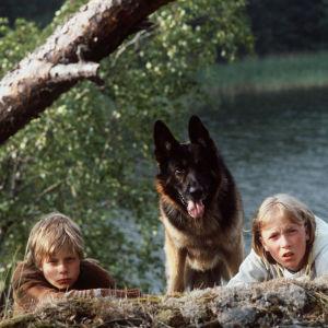 Miza Oinonen, joka esittää Ranea, susikoira Roi ja Paavo Westerberg, joka esittää Tomia.