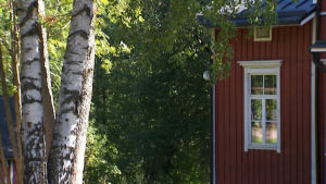 En skolbyggnad och två björkar.