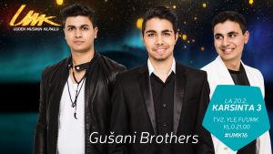Uuden Musiikin Kilpailu 2016, Gušani Brothers