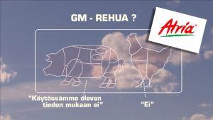 Gm-rehua? Grafiikka