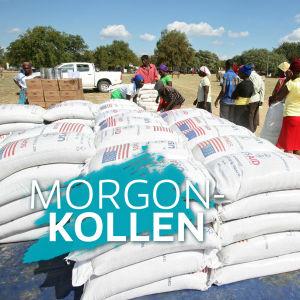 Människor köar för FN-organisationen WFP:s mathjälp i Mwnenzi, Zimbabwe.