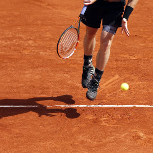 Andy Murray 2015