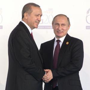 Turkeits och Rysslands presidenter skakar hand på G20-mötet 2015.
