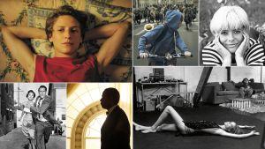 Kollaasi Teeman syksyn 2016 elokuvista: Vieras talossa, Kapina, Lapualaismorsian, Blow-up, The Butler, Varastetut ihmiset